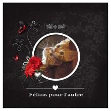 05-defi-amour-malou-v2