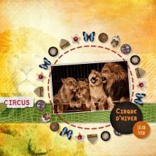 06-cdip-circus