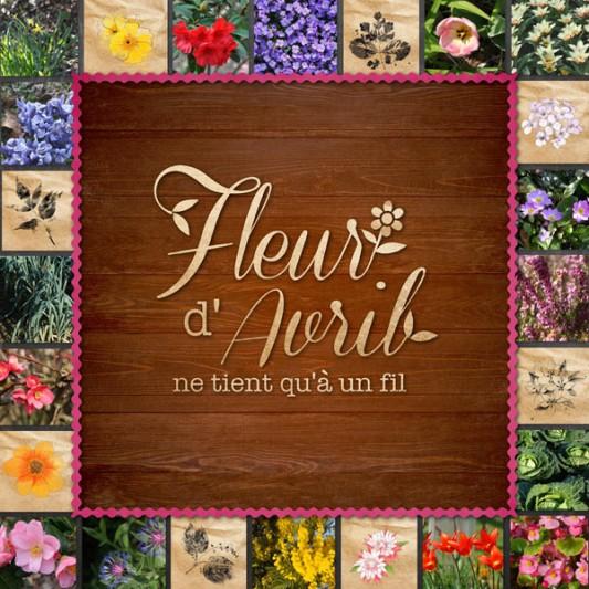 08 Cdip Fleur D Avril Cdip Boutique Logiciel De Genealogie Et