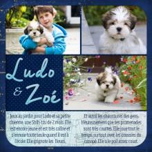 09-cdip-Ludo-et-Zoe