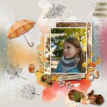 beautiful automn