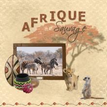12-bribri62-afrique-sauvage