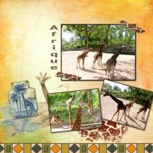 16-moyson-afrique
