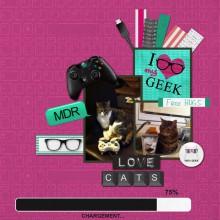 17-cdip-chats-geek