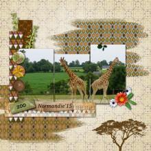19-larel-deux-girafes