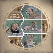 23-jdauchy-le-roi-de-la-savane