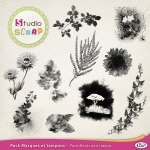 Pack-masques-et-tampons-vegetaux-web