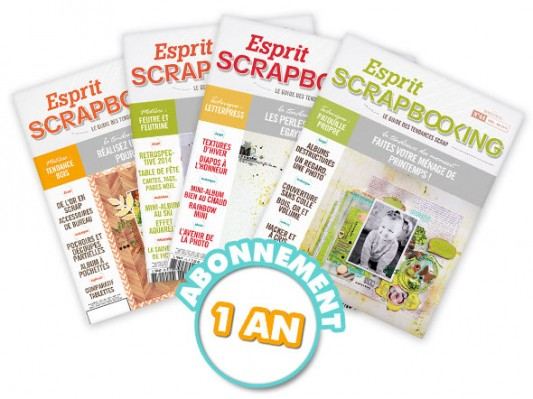 Livres-scrapbooking-Esprit scrapbooking- Abt 1 an