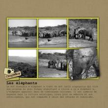 album-zimbabwe-20