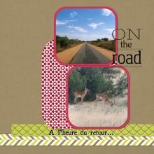 album-zimbabwe-24