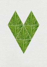 cdip-jungle-geometrie-page-3