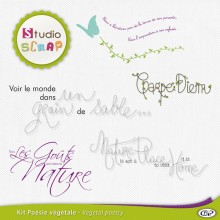 kit-poesie-vegetale-presentation-wordart-02