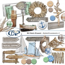 Embellissements du kit de scrapbooking
