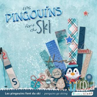 Kit « Les pingouins font du ski » en téléchargement