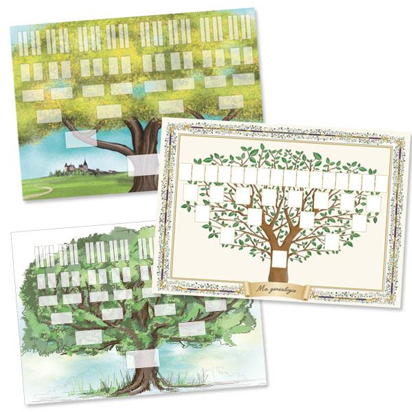 Pack 3 arbres imprimés 5 et 6 générations format A2