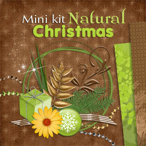 "Mini kit ""Natural Christmas"" - 00 - Presentation"
