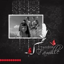 Kit « Rouge passion » - 30 - Composition