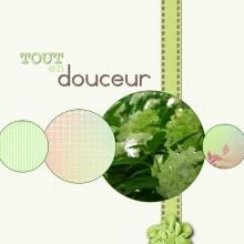 Kit « Jardin des delices » - 32 - Composition
